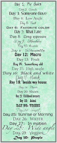 december-photo-list Small