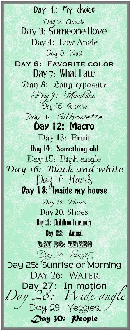 December Photo List