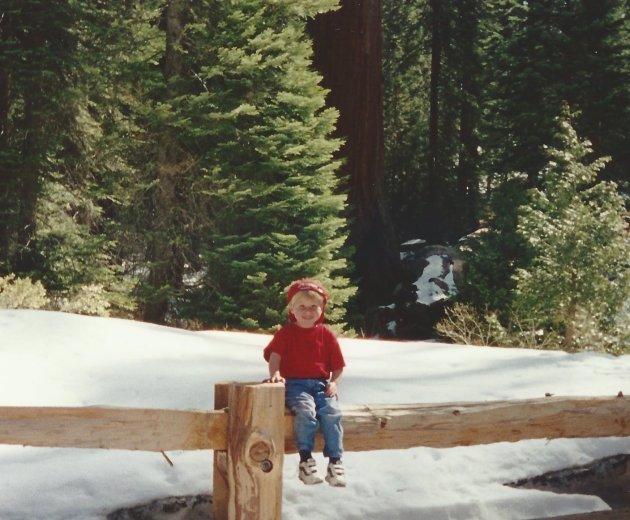 Streeter Sequoia
